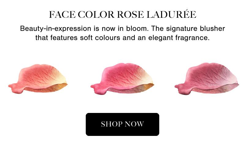 Laduree Feature Info